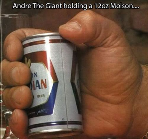 Andre_the_giant_14